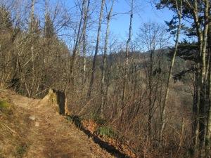 Gifford Pinchot foothills