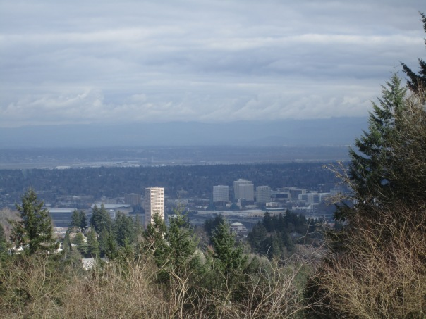 View to downtown from Council Crest
