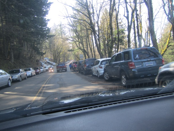 Angel's Rest Trailhead crowds