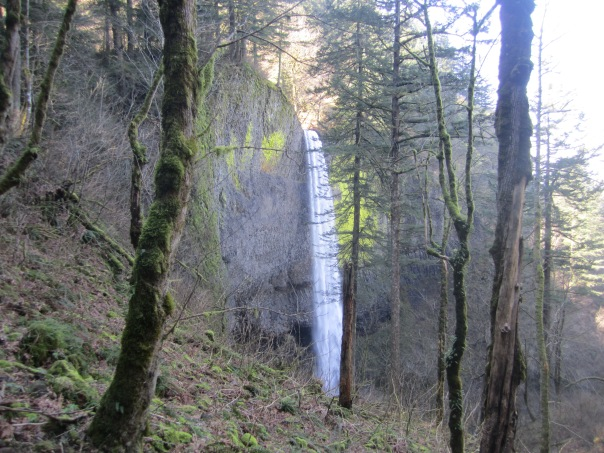 Sideways view of the lower falls