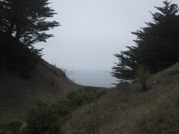 The Pacific below our placid trail