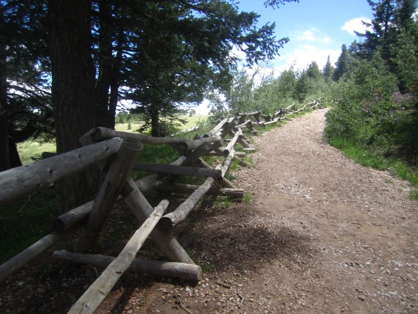 The final section of path above the meadow neatly fenced