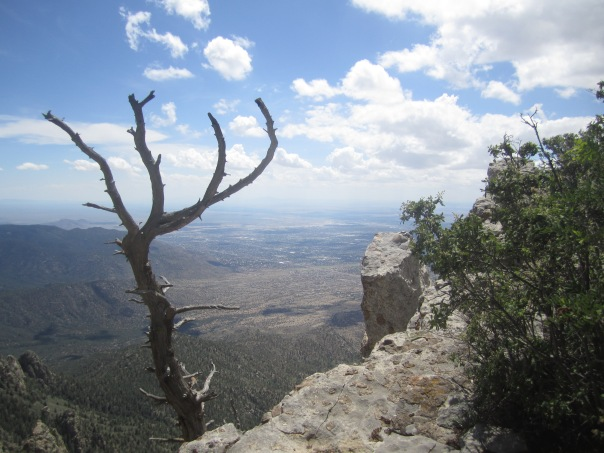 Looking toward Albuquerque just below the hut