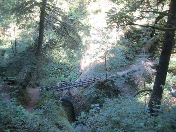 Looking down at the hiker's bridge