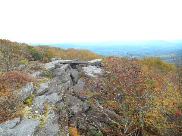 View number one from Bald Knob