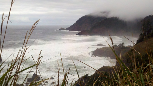 Looking north from a point on the trail, Ecola State Park