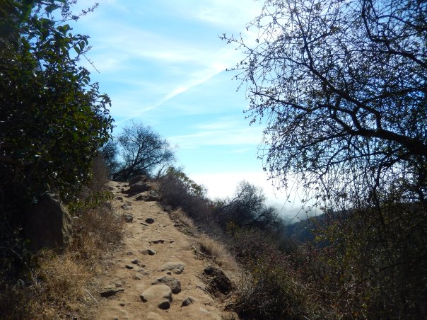 A fairly steep spot on the trail