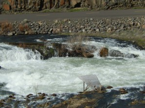 Fishing platform over whitewater at Sherar's Falls