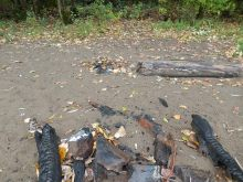 Campfire remnants, and a basketball shoe too