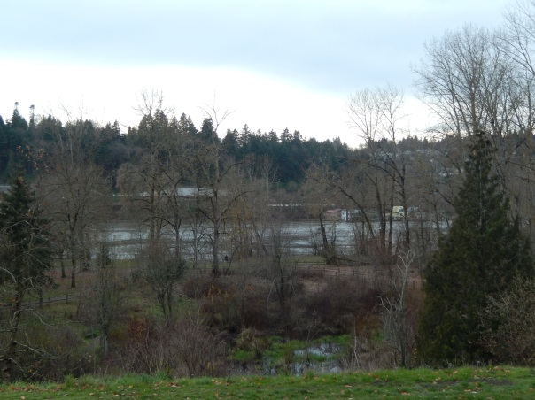 Looking west near the parking lot in the Sellwood neighborhood