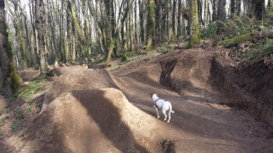 On the way down, after a bushwhack, I found this secret mountain bike park. Shhhh