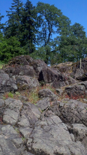 Clambering around on the rocks was fun