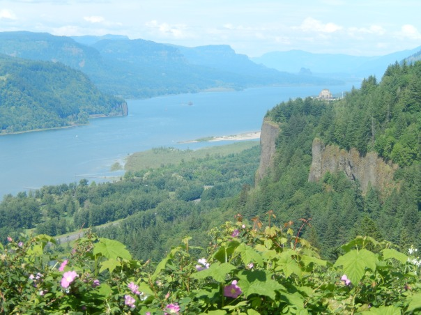 On the drive.  A classic view of the Columbia River Gorge