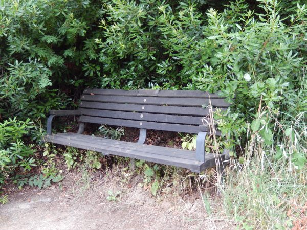 One of many benches where I paused to read