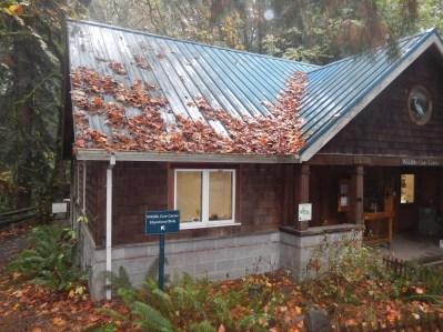 The Wildlife Care Center