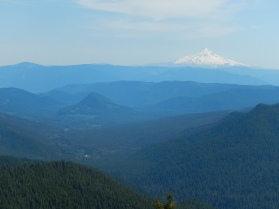 Mt. Hood and a funny little alp in the foreground